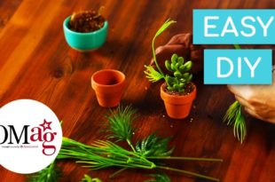 OMAG Easy DIY Potted Plants for your doll! | OMaG | American Girl